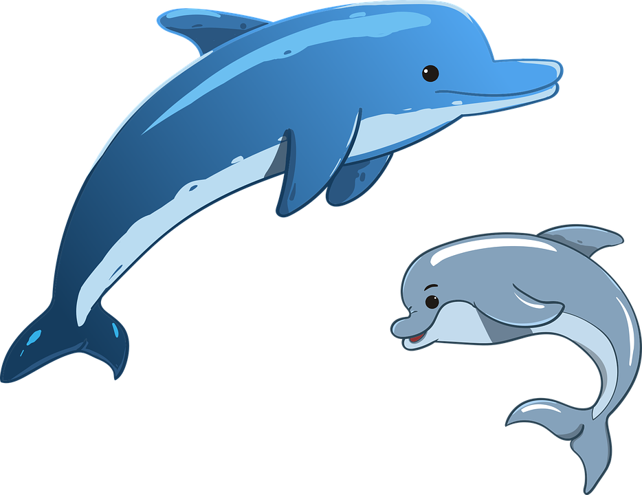 dolphin sea animals mother and vector graphic #22009