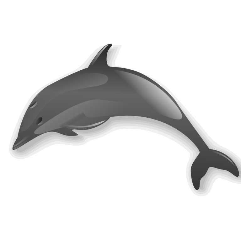 file dolphin svg wikimedia commons #22029