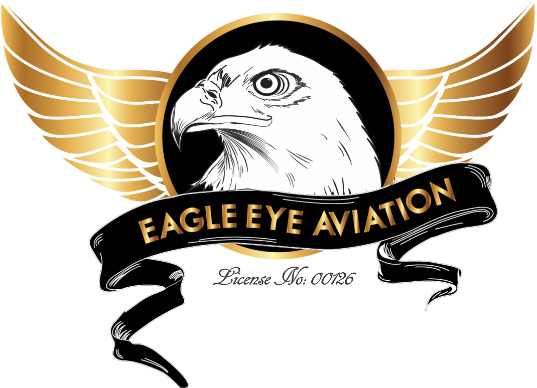 eagle eyes png logo 3225 free transparent png logos