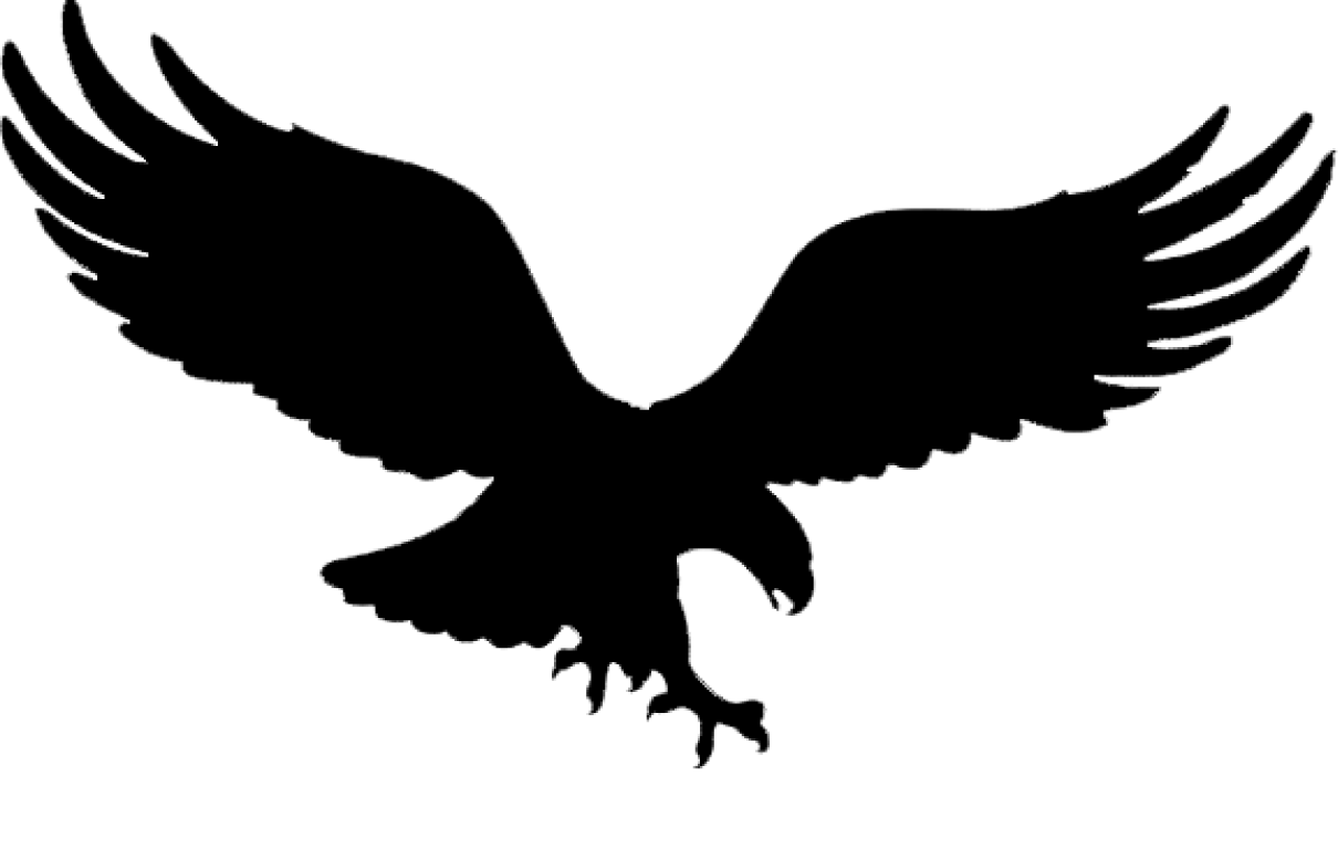 clan of the american eagle png logo 4053