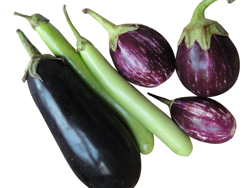 brinjal eggplant png image png transparent best photos #29816