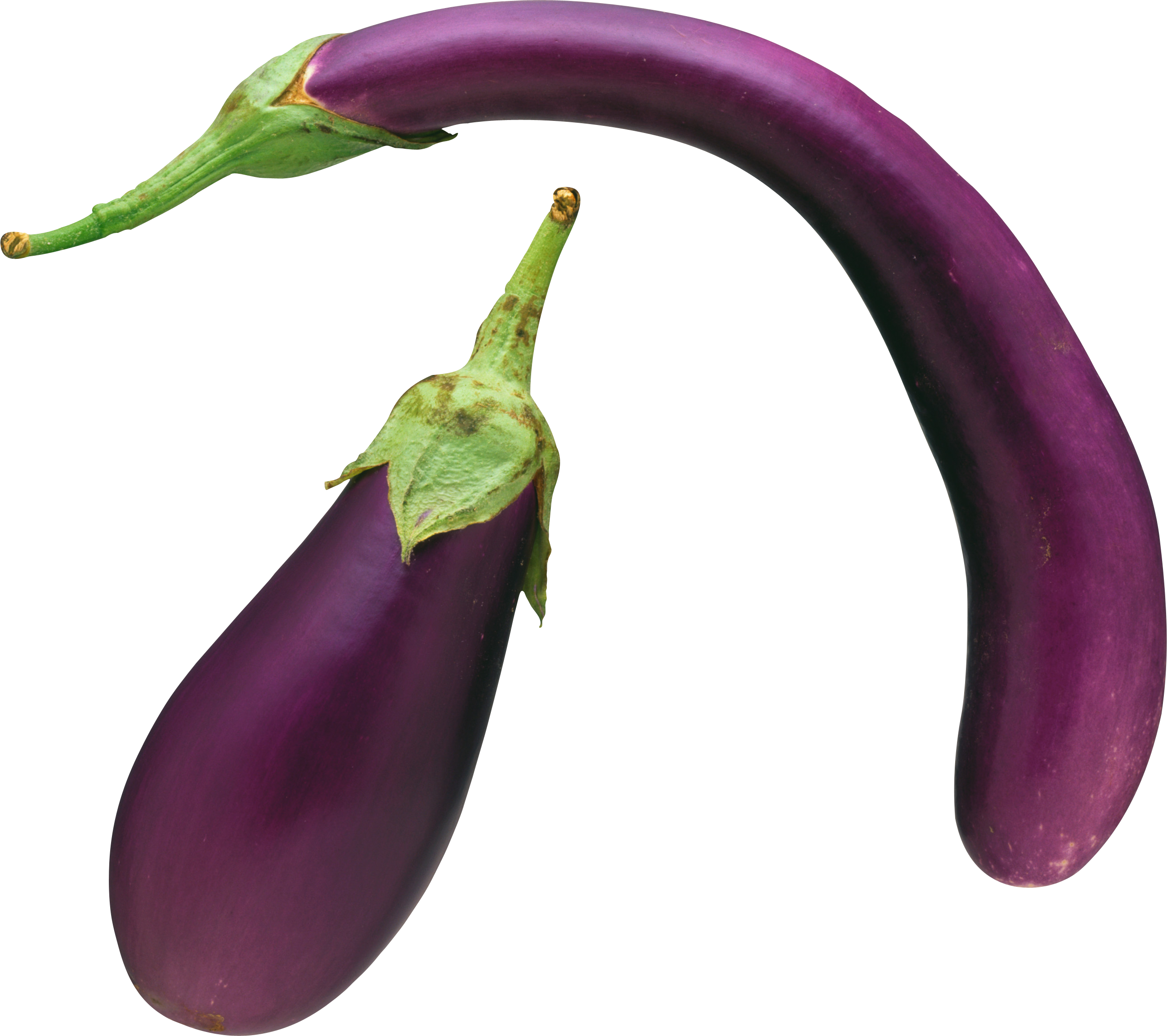 eggplant clipart single vegetable eggplant single vegetable transparent for download #29805