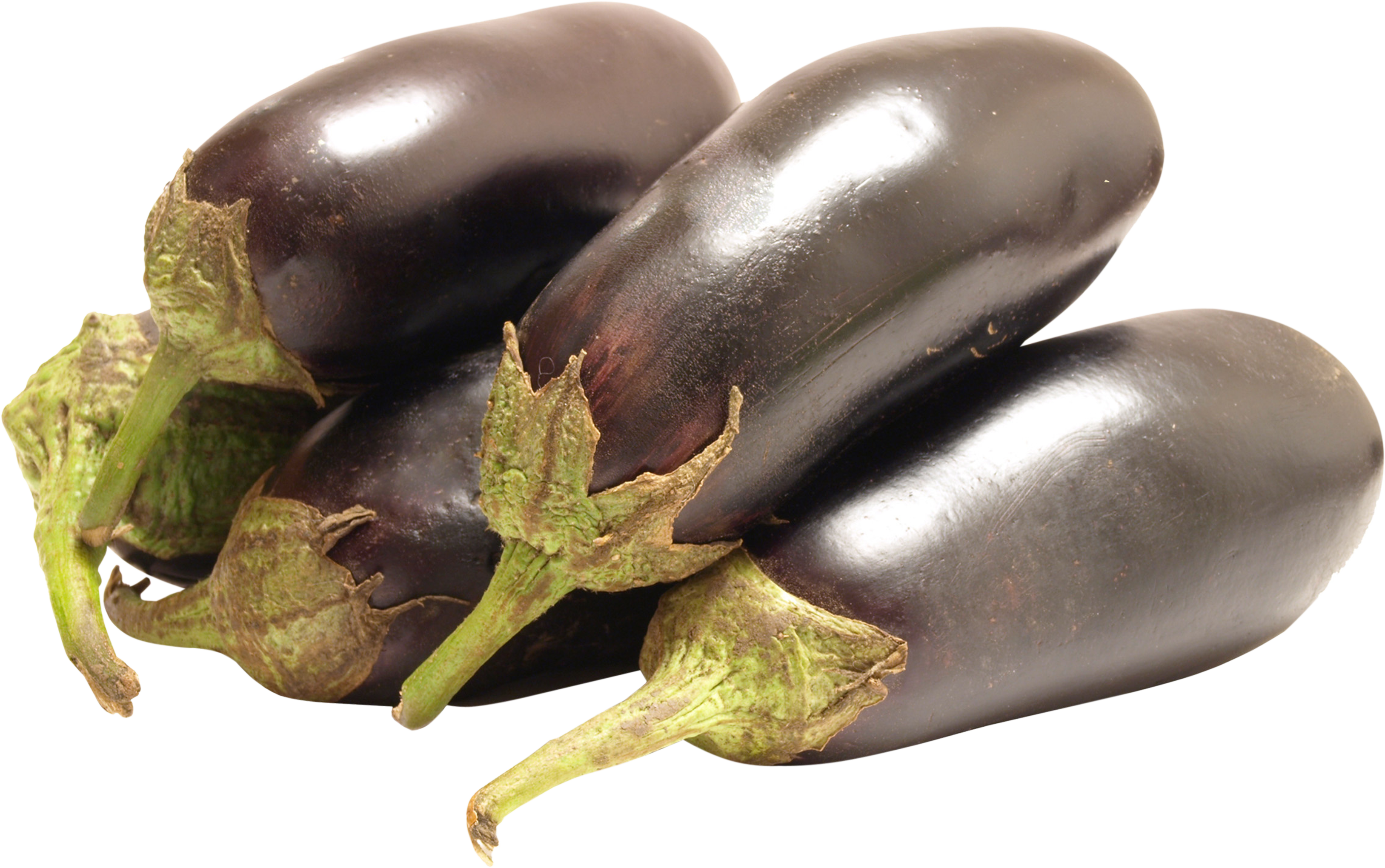 eggplant transparent png pictures icons and png backgrounds #29838