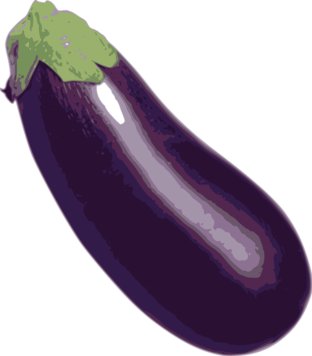 vector graphic eggplant vegetable food image pixabay #29779