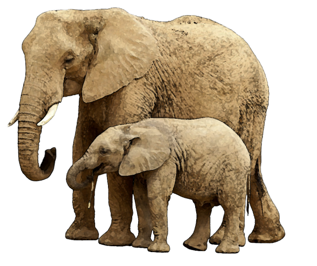 elephant, mom and baby animal clipart clipart suggest #15827