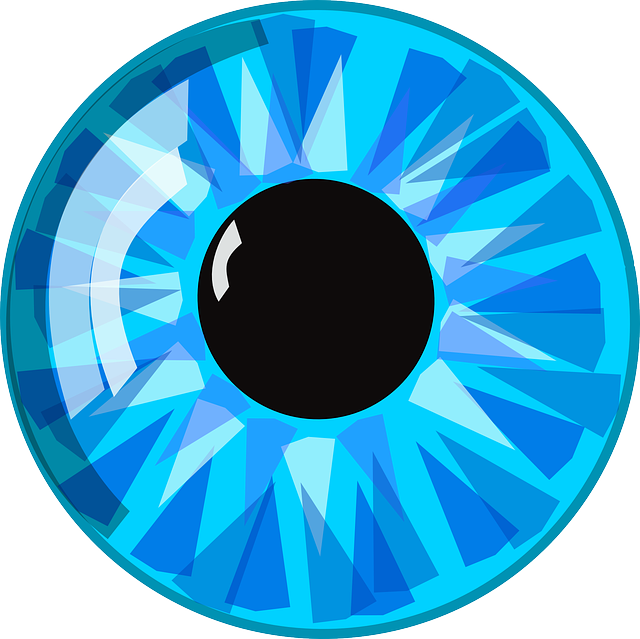 eye blue pupil vector graphic pixabay #10743