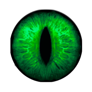 eye png envy snappy design #10688