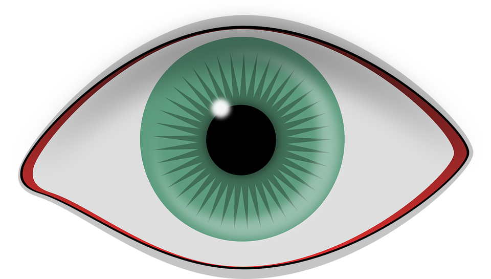 eye pupil iris vector graphic pixabay #10679