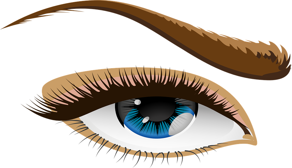 vector graphic eye blue eyes eyelid iris #10677