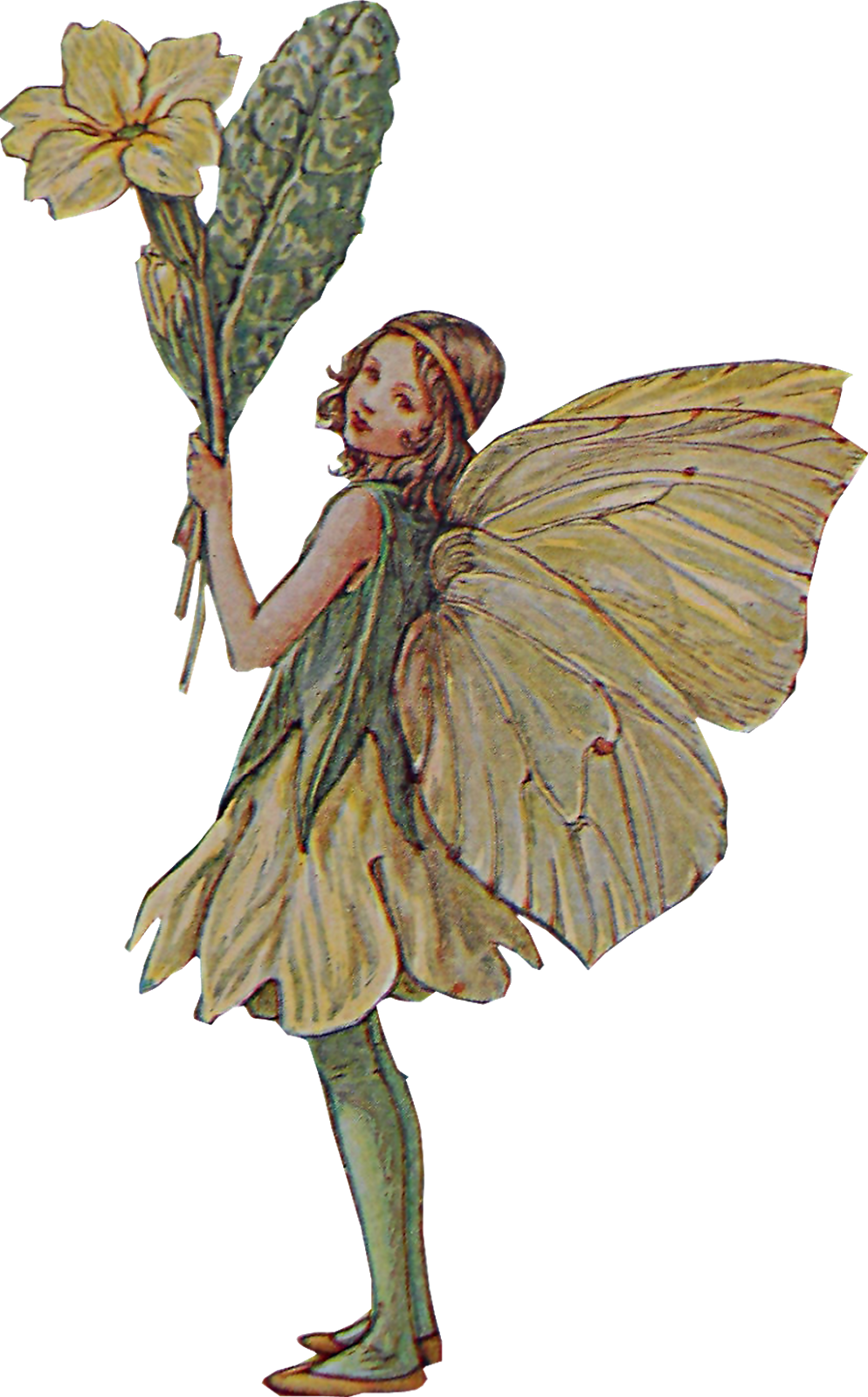 fairy, faeries and little folk #28615
