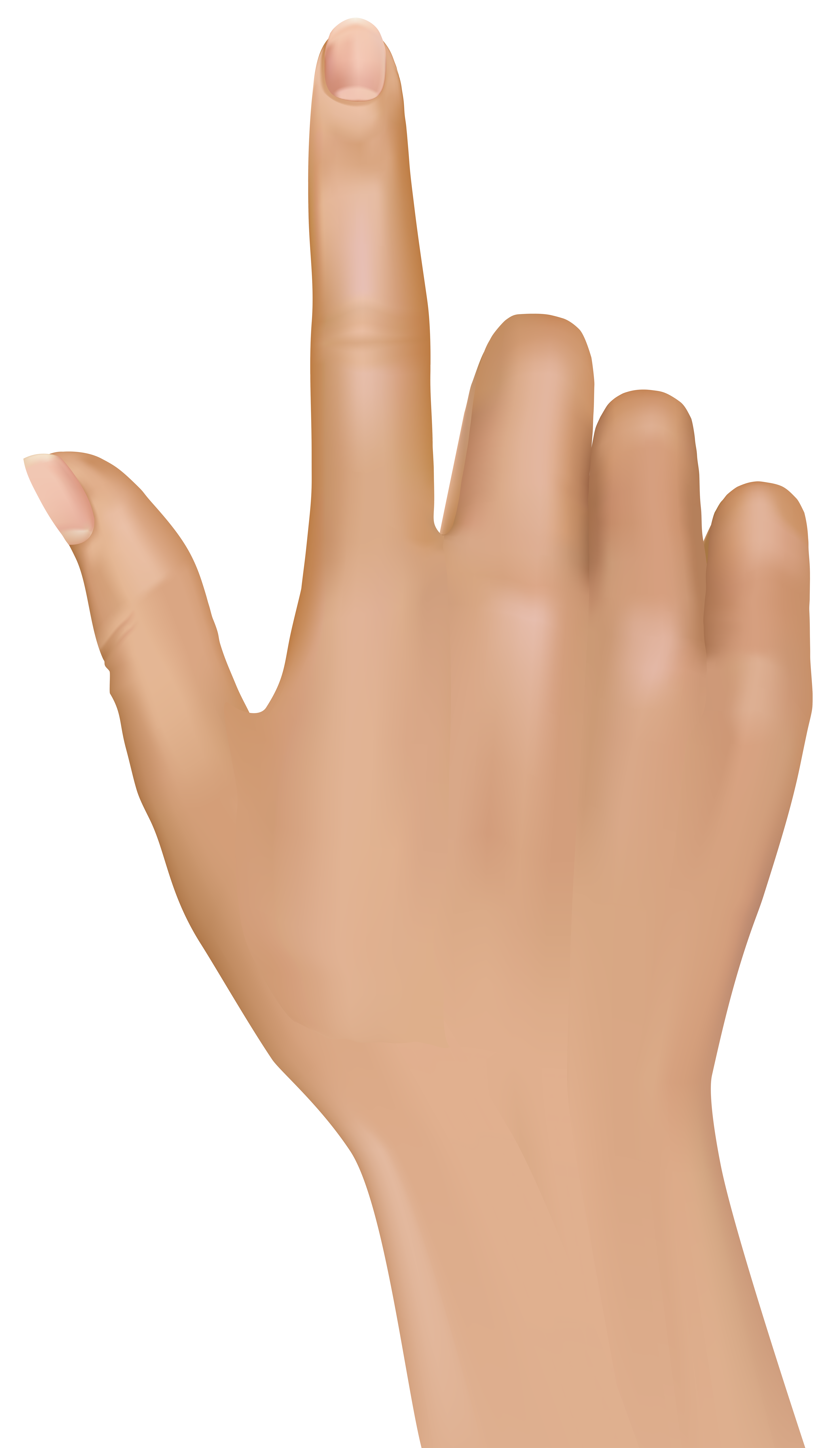 tuching finger hand clip best clipart #8646