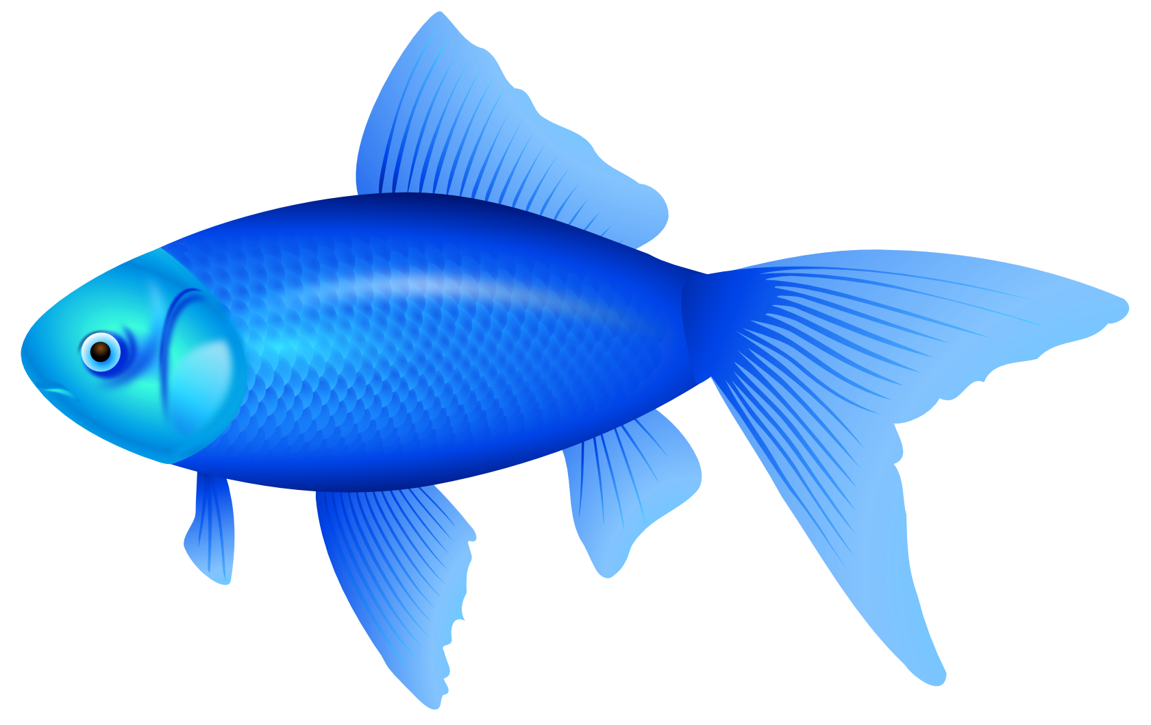 best blue fish clipart clipartionm 11977