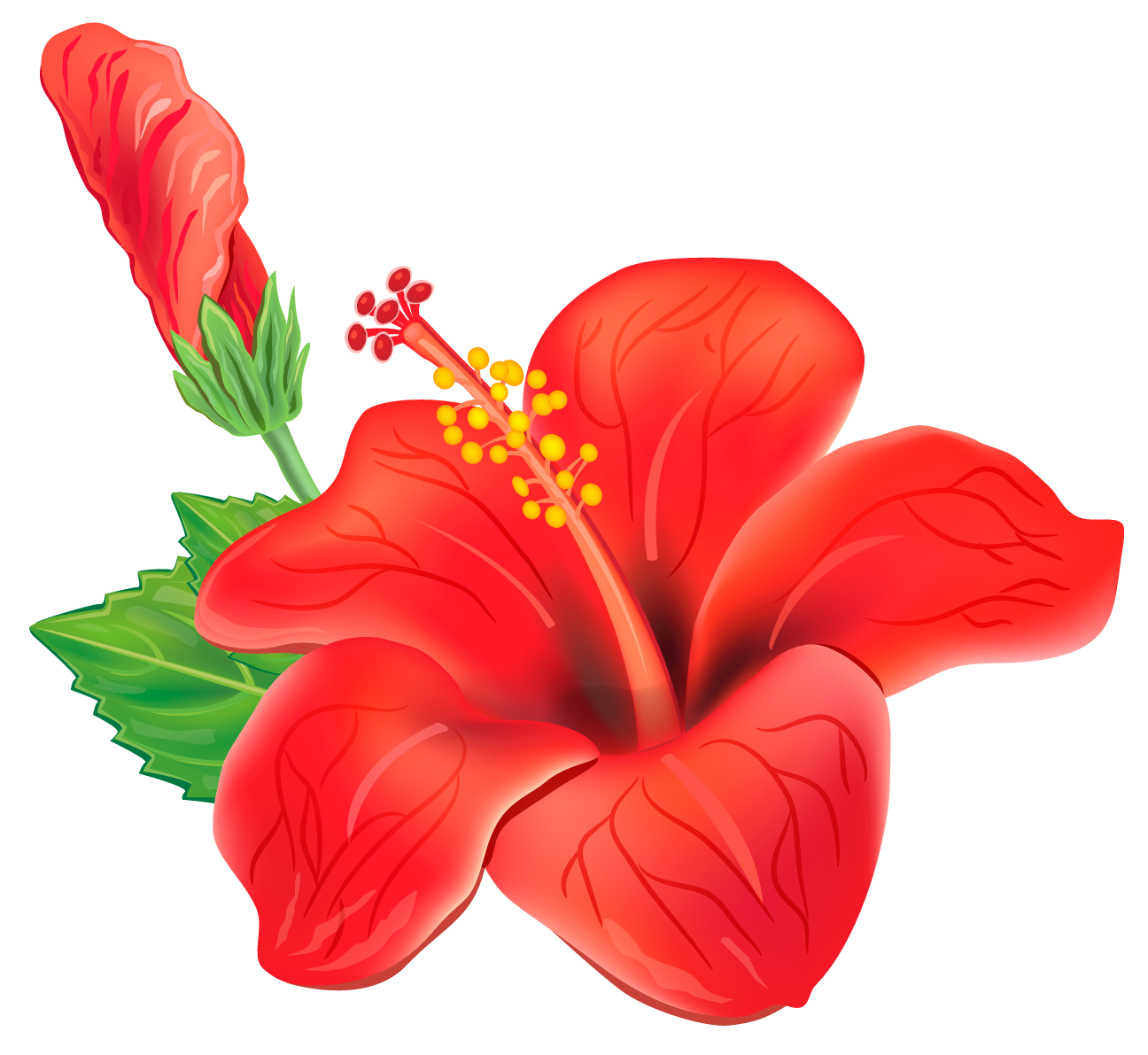 flour tropical png transparent red exotic flower png #37418