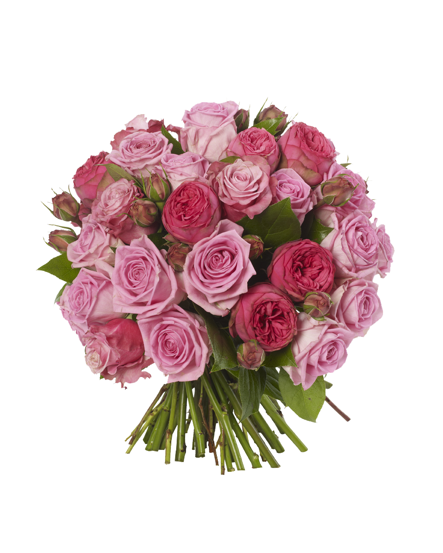 png pink roses flowers bouquet download #34085