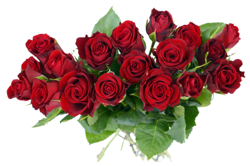 rose bouquet png transparent image #34102