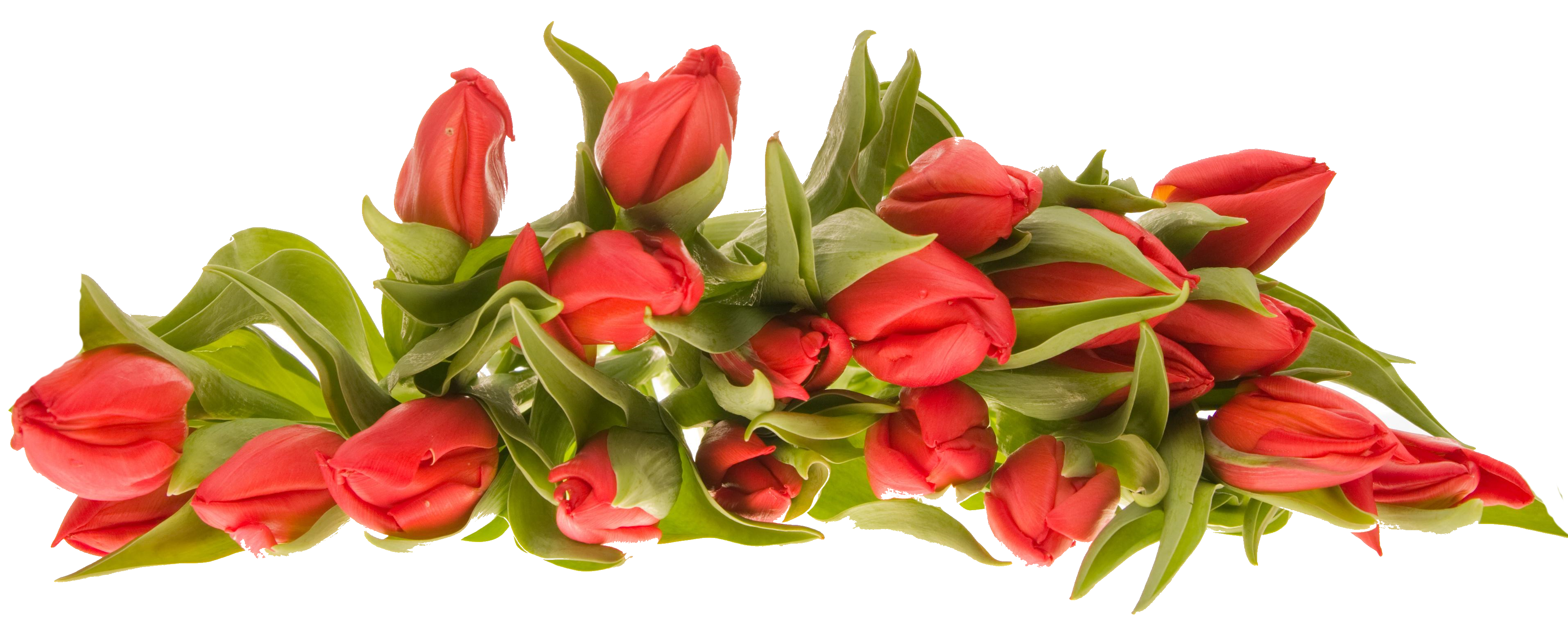 bouquet flowers images hd photo #8199