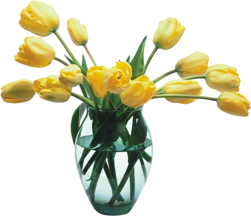 flower vase, glass vase with yellow tulips gallery yopriceville high quality images and transparent png #28648