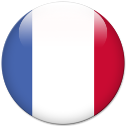 france world flags icon #8049