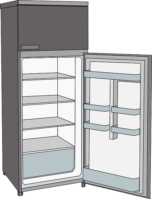 refrigerator fridge cooling vector graphic pixabay #18169