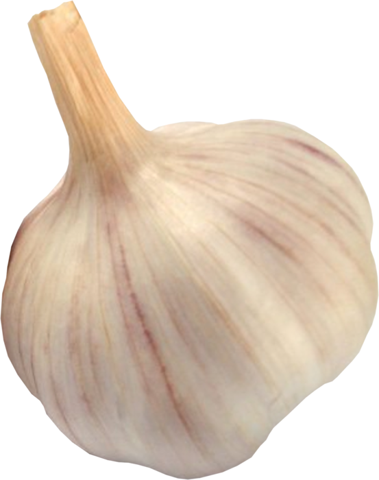 garlic png images for download crazypngm #25527