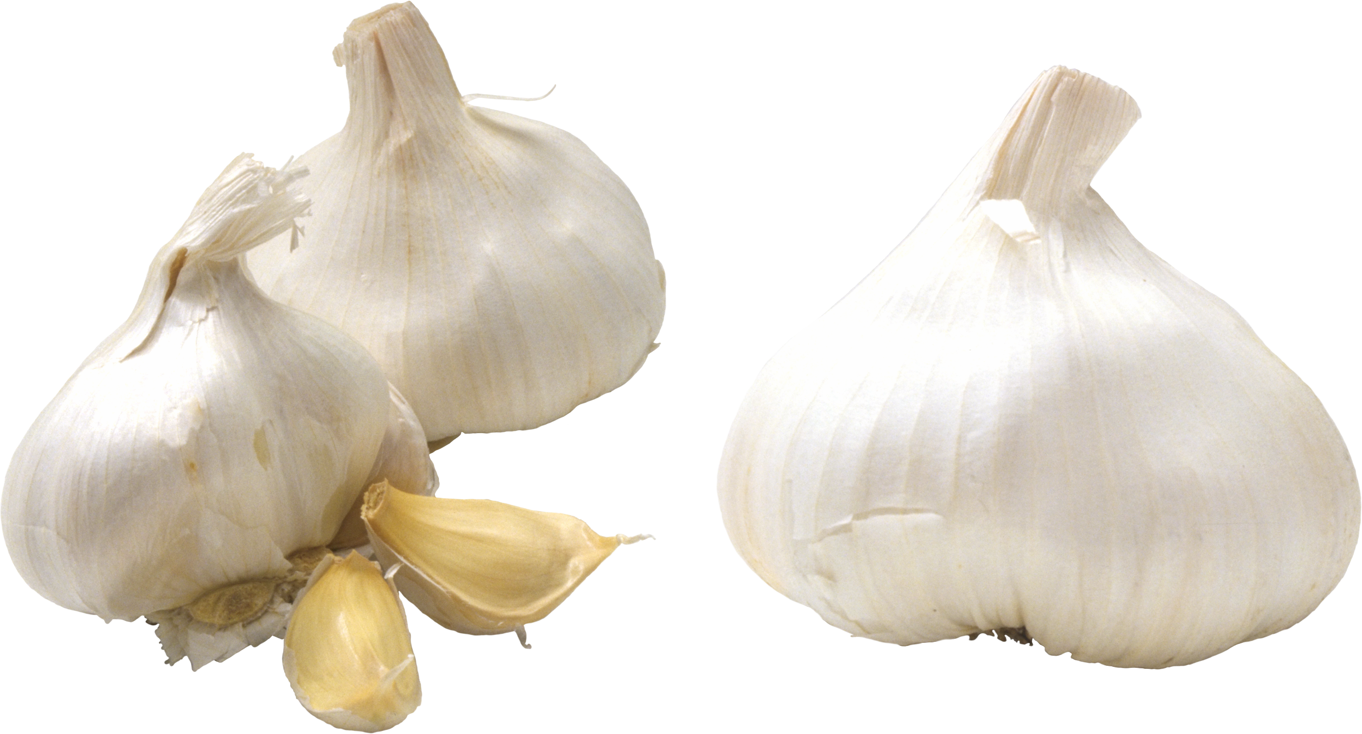 garlic png images for download crazypngm #25532