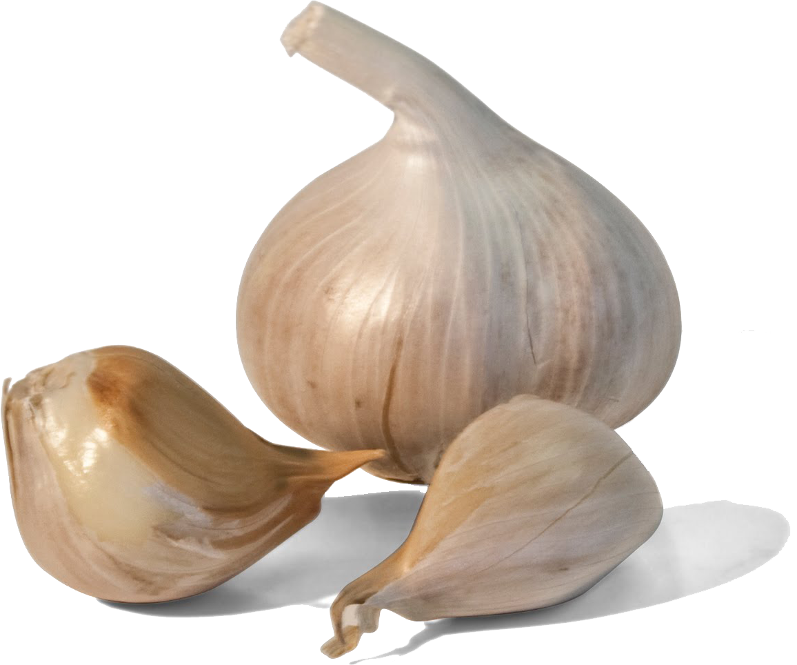 garlic png images for download crazypngm #25538