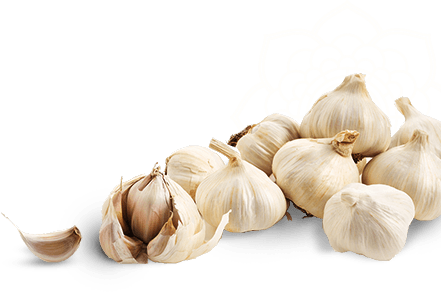 garlic png transparent images png only #25536