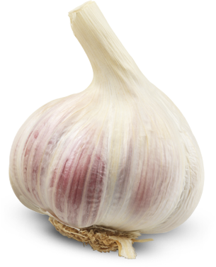 garlic png transparent images png only #25491