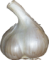 garlic, tux paint stamp browser food #25579
