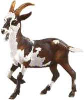 goat, tux paint stamp browser animals #16793