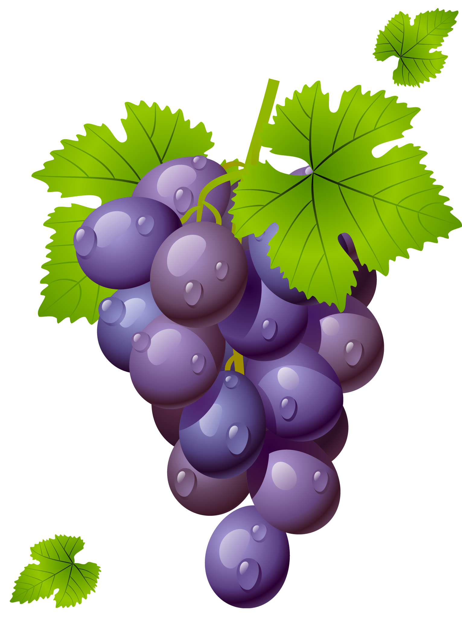 grapes, grape with leaves png clipart picture #17060