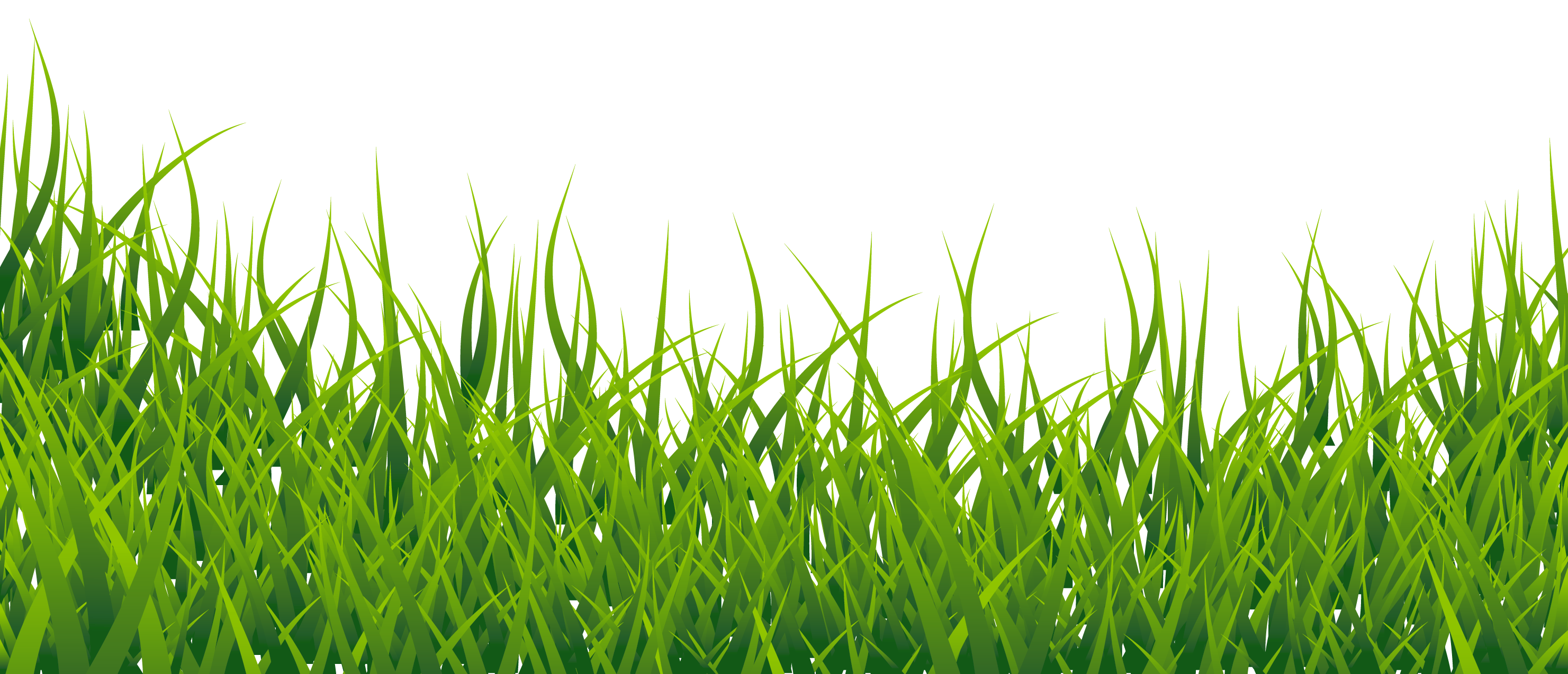 Grass Hd Png Images Grass Texture Clipart Free Download Free Transparent Png Logos