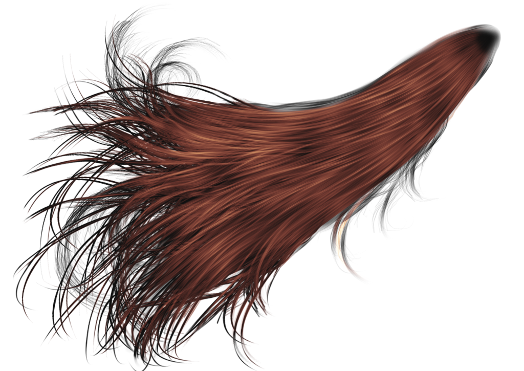 hair png transparent hair images pluspng #12762