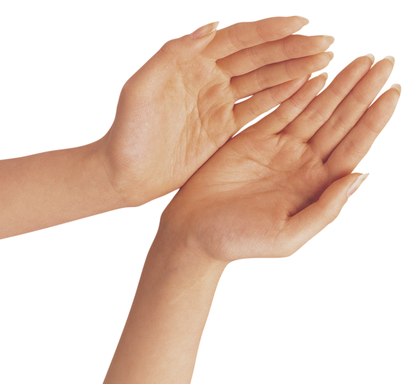 hand png two hands png clipart image gallery yopriceville high #10581