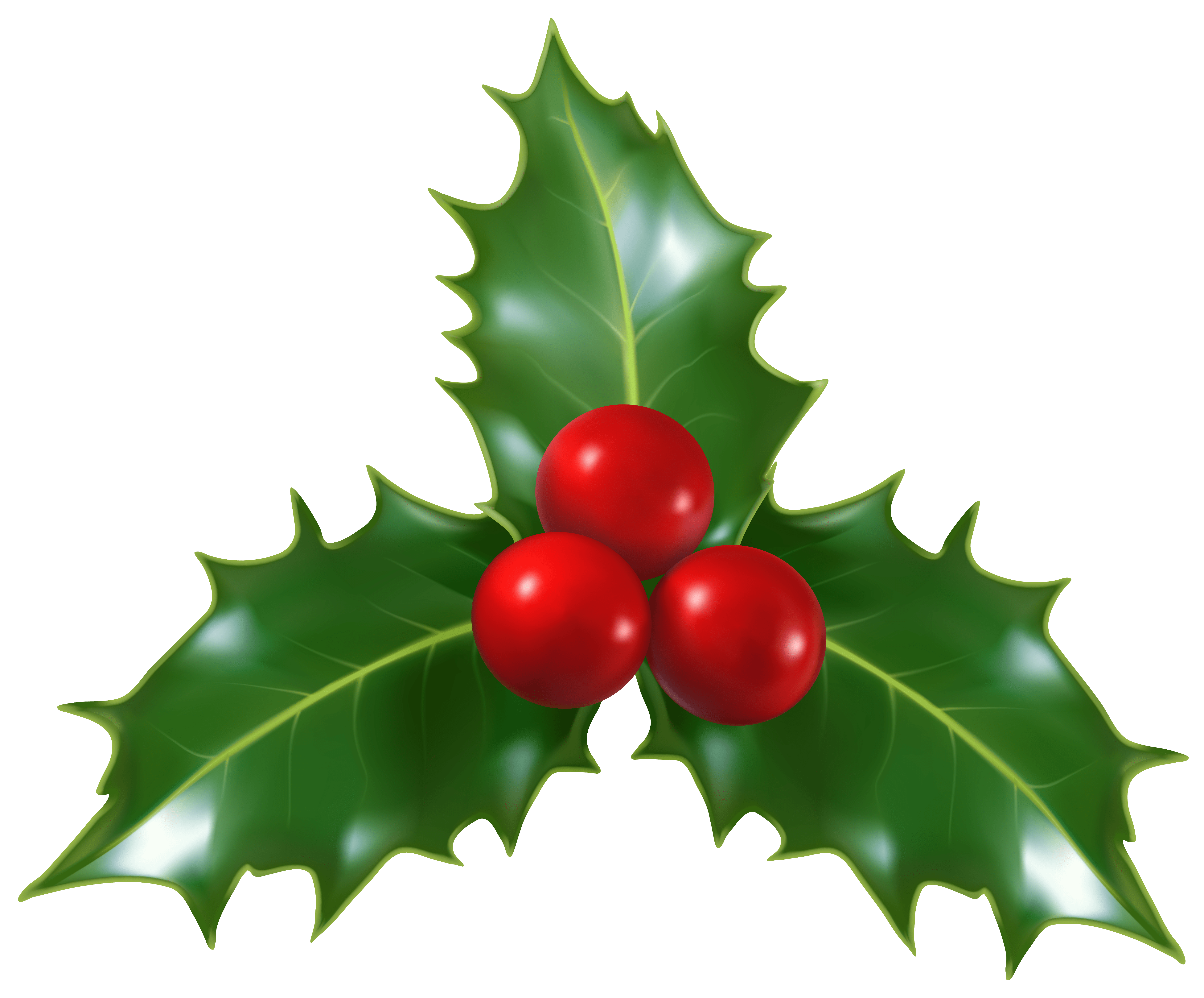 christmas holly wallpaper #28092