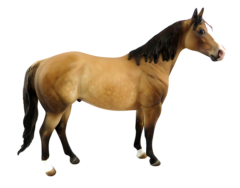 horse brown isolated photo pixabay #15737