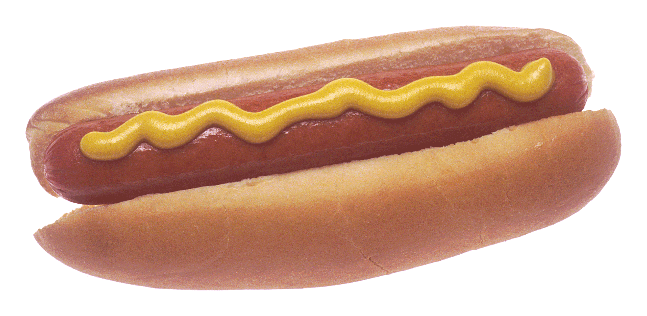 hot dog wikiwand #17631