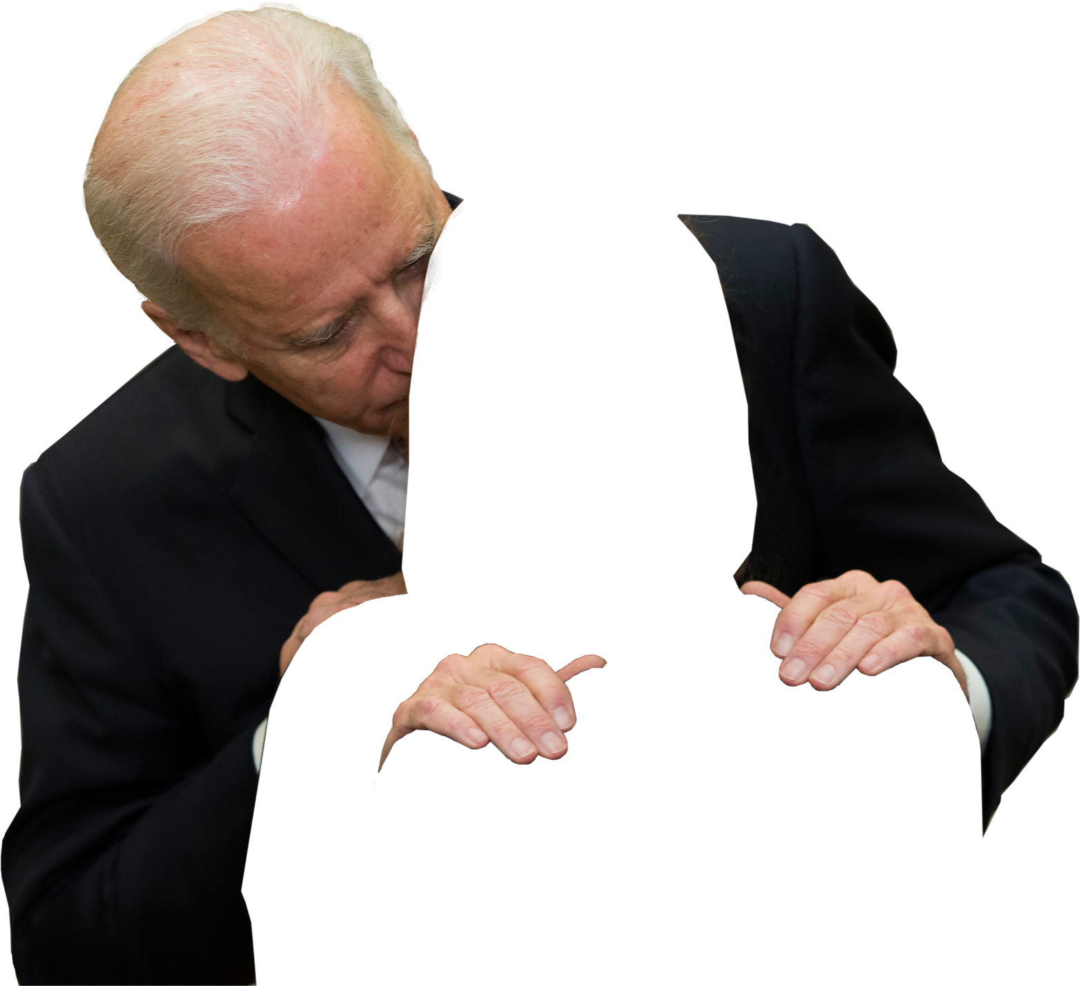 download person joe biden #40983