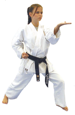 karate black belt club program american martial arts academy #34556