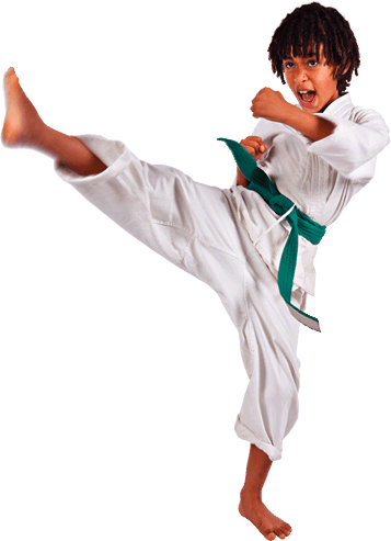 karate boyz organizables #34539