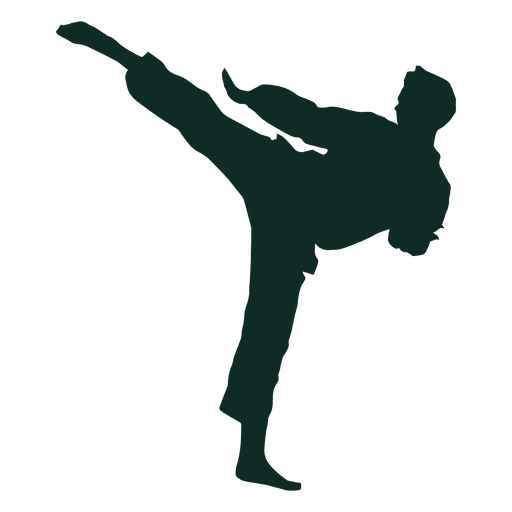 karate high kick training transparent png svg vector #34536