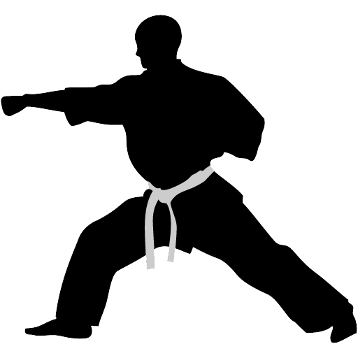 karate punch icon rothrock kung tai chi #34546