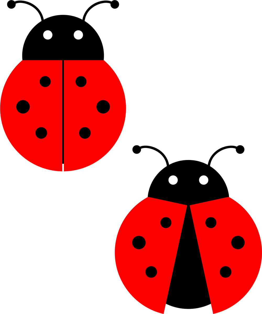 download red ladybug png photos for designing purpose transparent png images icons and #29658