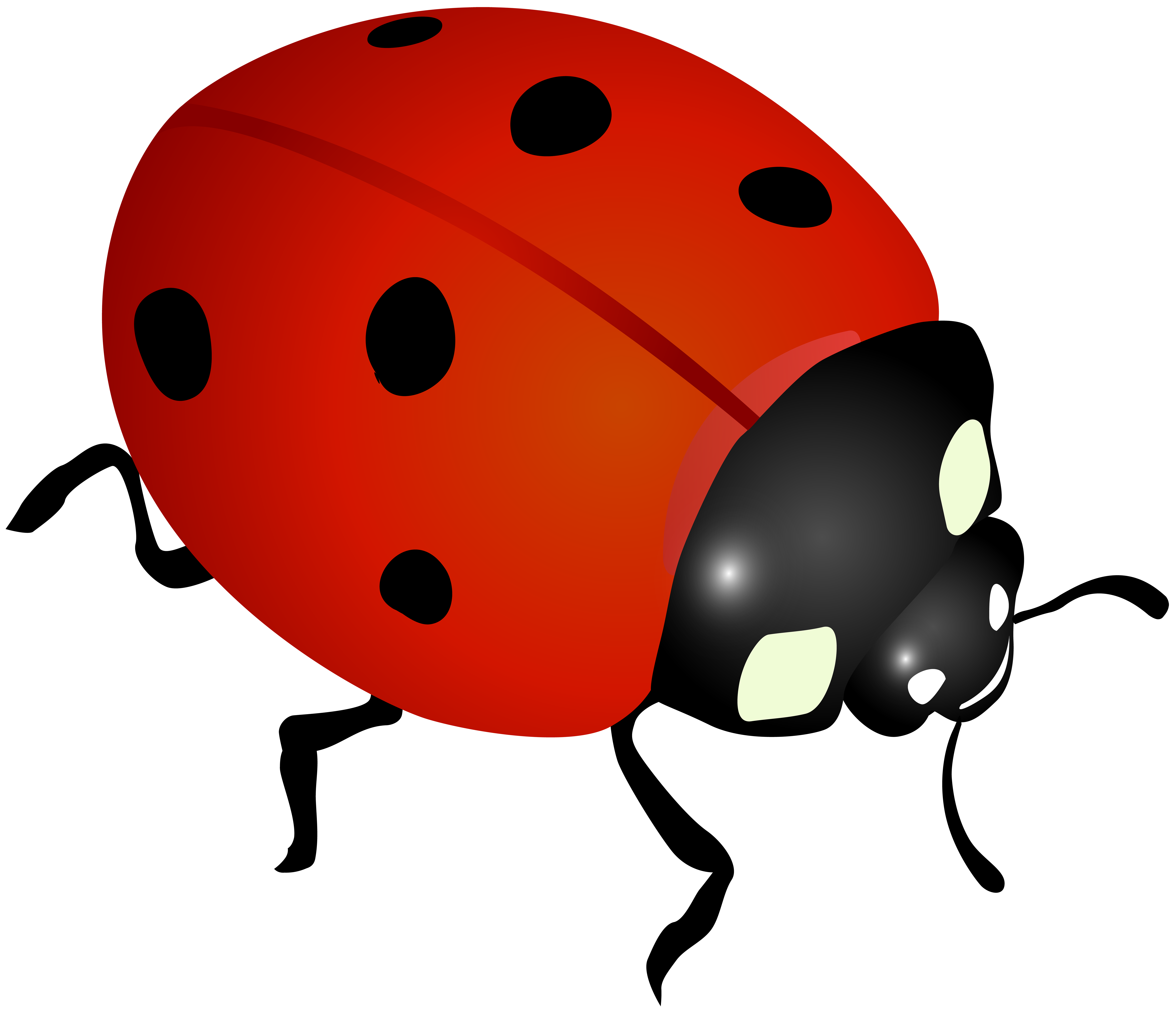 ladybug clip art image gallery yopriceville high quality images and transparent png clipart #29687