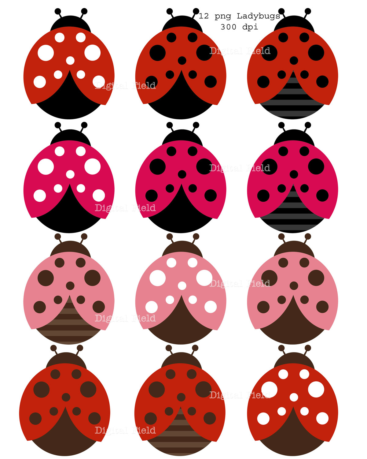 black and white ladybug clipart download clip #32088