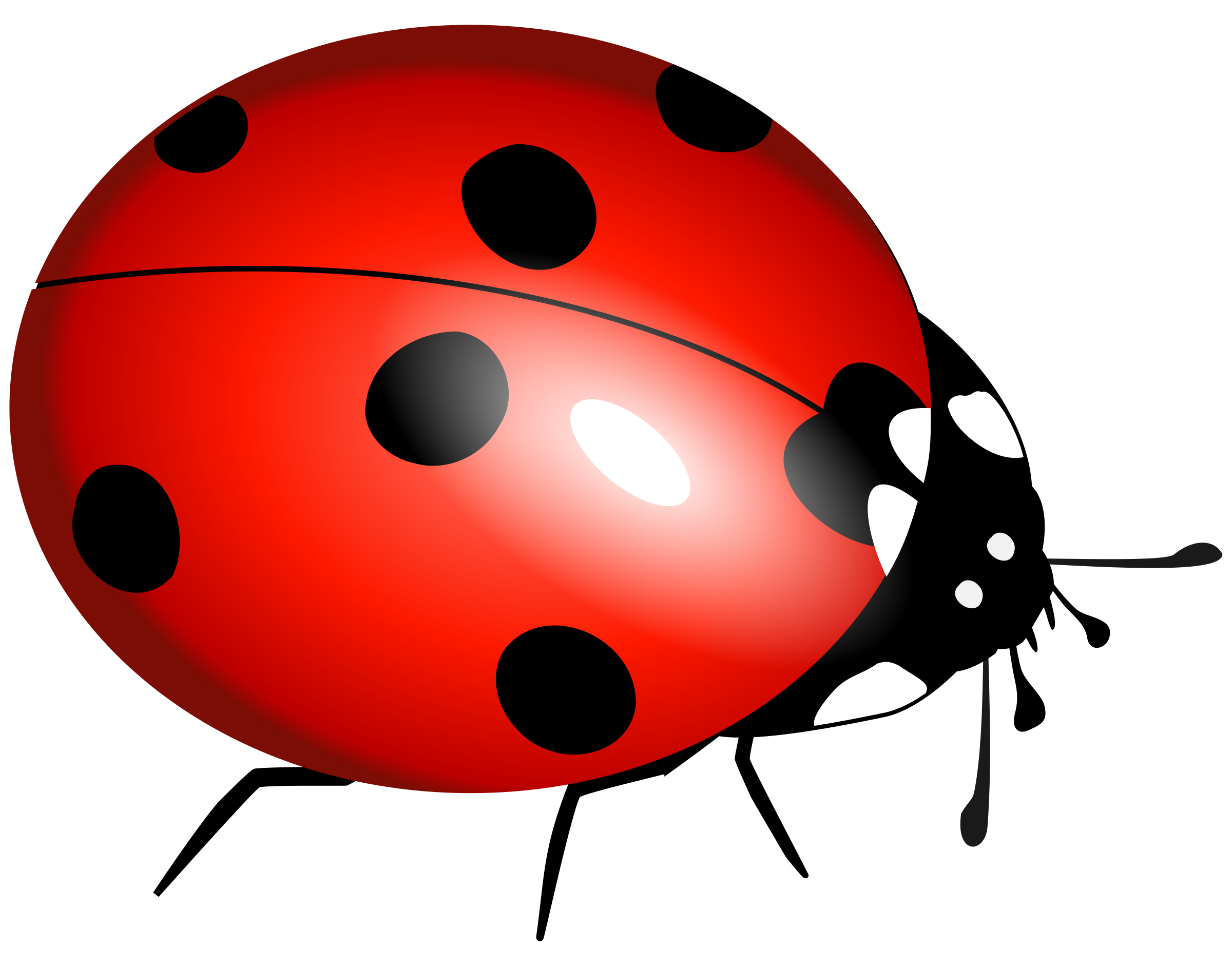ladybug clipart, ladybug flying clipart clipart panda clipart #32073