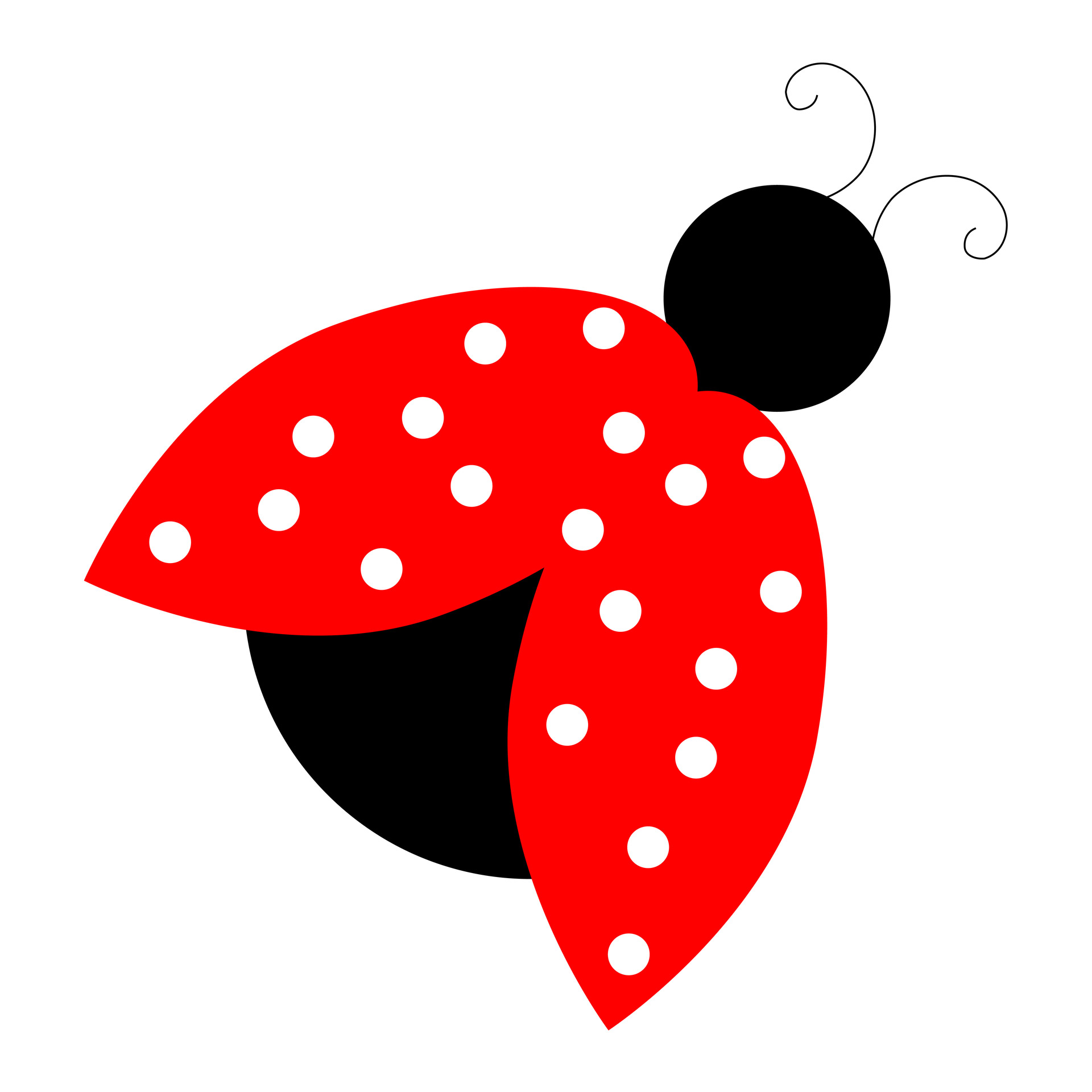 red ladybug clipart photo domain pictures #32081