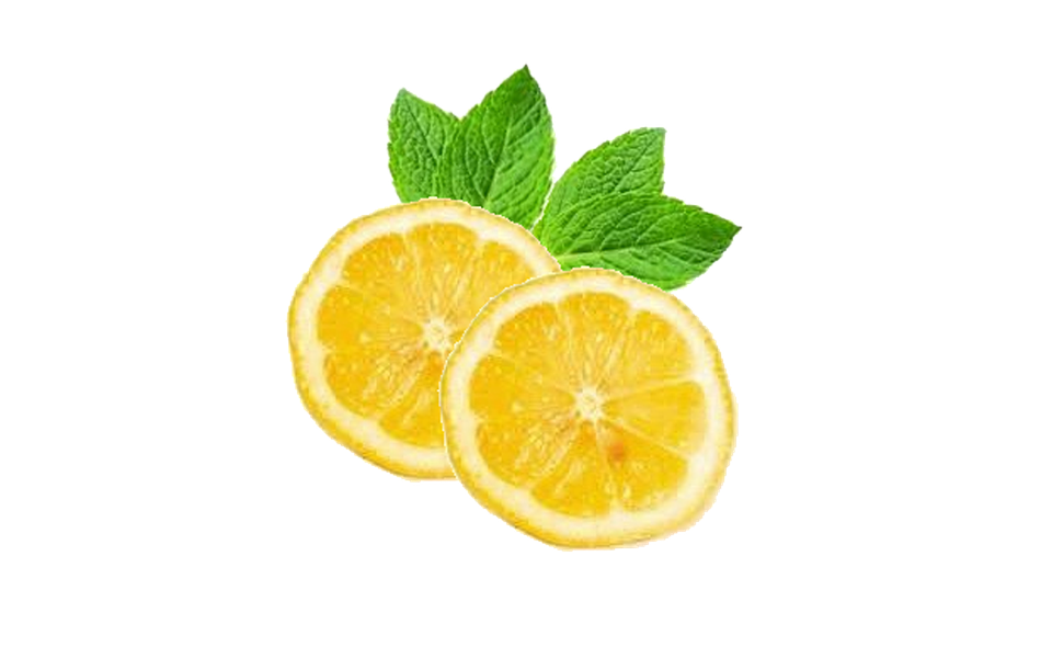 illustration lemons mint lemon citrus #13403