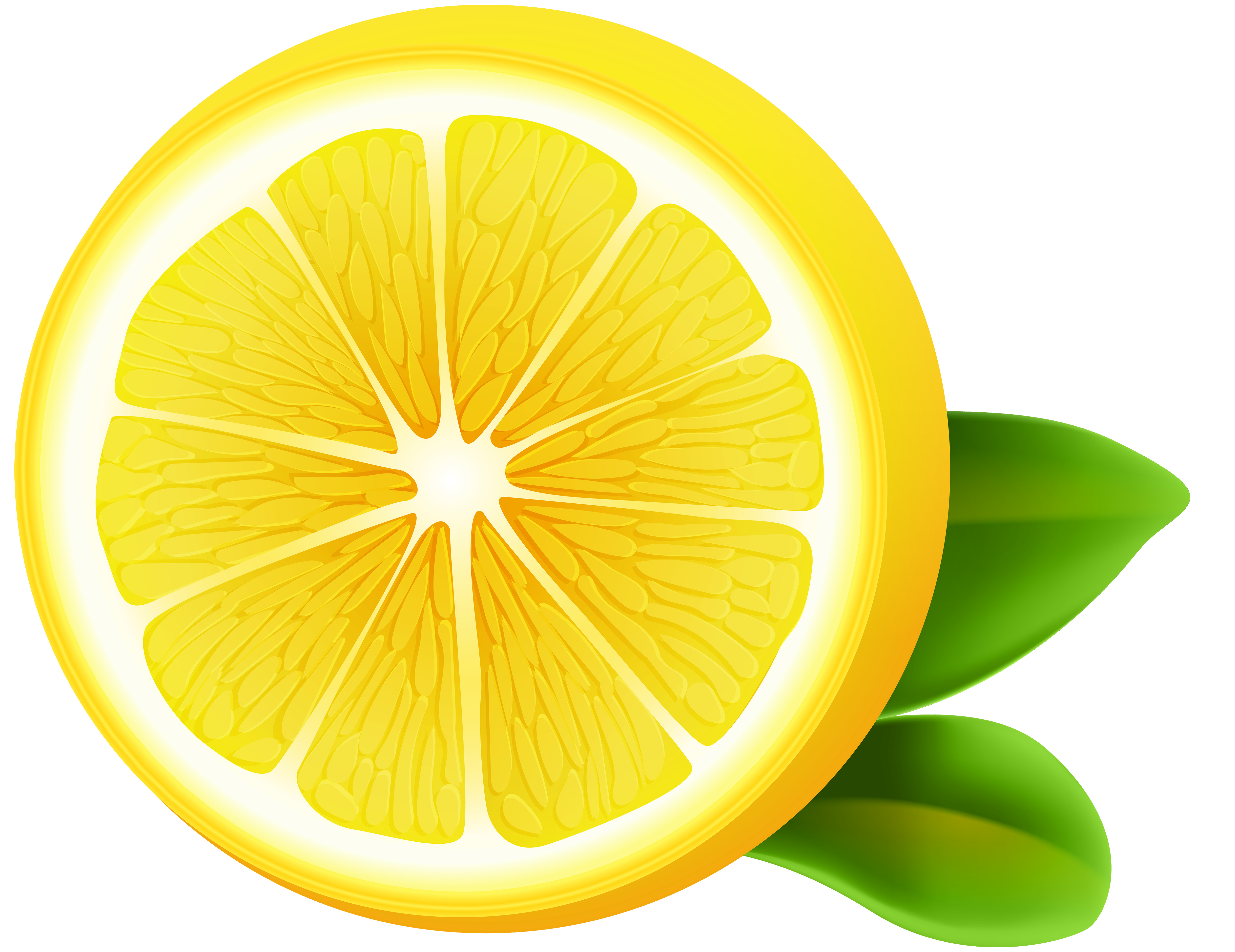 lemon clipart transparent pencil and color lemon #13367