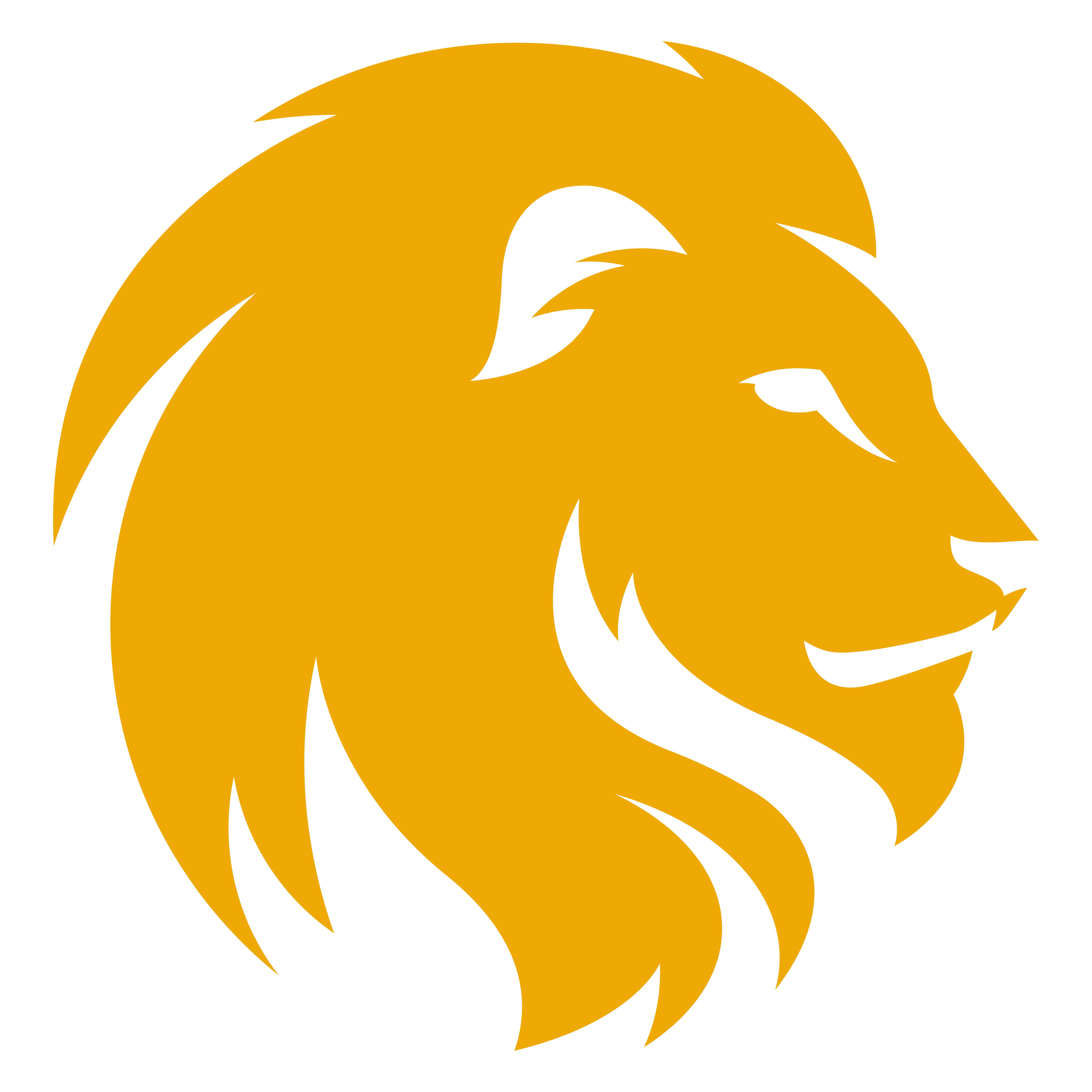 lion png transparent image fro images #33400